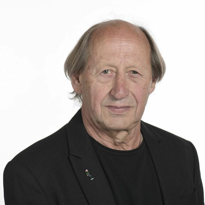 Michel Friche